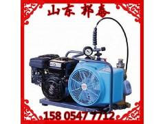 BAUER进口空气充气泵JuniorII-W原装进口高效率