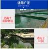 鱼池潜水泵的选择 锦鲤鱼池用什么水泵好?赤坂
