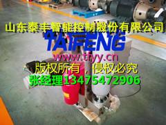 泰丰智能YJ41C-100SYCV壹佰吨阀块