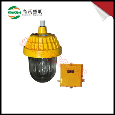 SW8300 重量3.2Kg  防爆平台灯