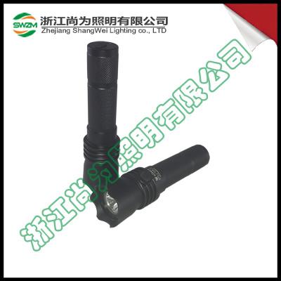 SW2101 高光效 强光防爆电筒