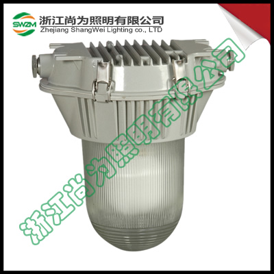 SW7110  强度高,耐腐蚀 无极泛光工作灯