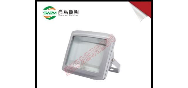 SW7213 免维护高光效  LED节能泛光灯